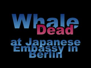 Greenpeace put a dead whale in front of Japanese Embassy in Berlin January 2006 to stop Japan whaling