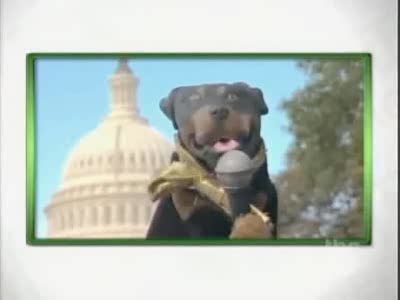 The Insult Comic Dog sits down with some Republican Congressmen to discuss issues related to Global Warming.